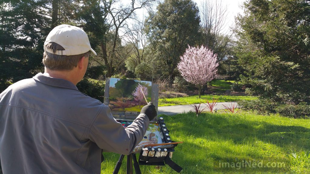 Photo shot over the shoulder of plein air painter, showing his easel with a partly completed painting of a flowering plum tree in a garden.