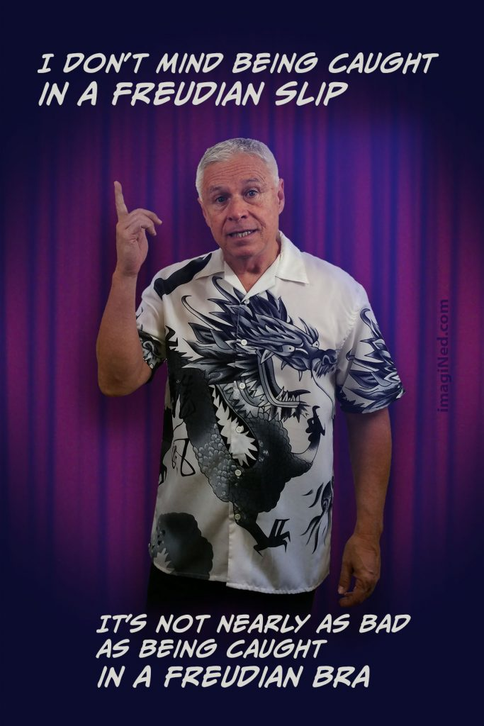 Ned, wearing Oriental dragon print shirt, standing in front of nightclub stage curtain pointing up, as if to make a point. The associated text is positioned above and below his image.