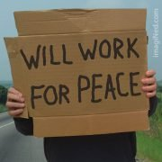 Hands holding cardboard sign saying, WILL WORK FOR PEACE
