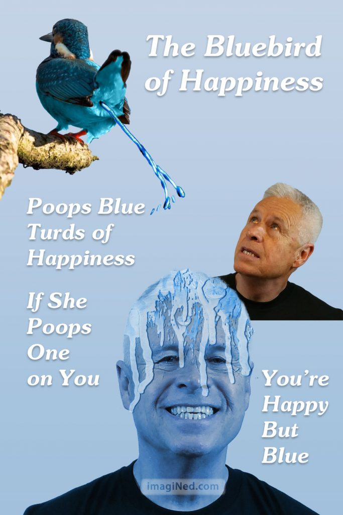 A blue bird perched up on a branch shoots a stream of blue poop on to the blue tinted head of Ned Buratovich.
