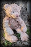 A pink-tinged, washed out teddy bear slumps at the base of a tree trunk in the setting sun.