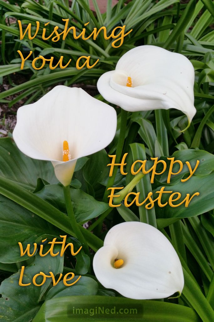 A photo of three calla lilies overlaid with this greeting: Wishing you a happy Easter with love.