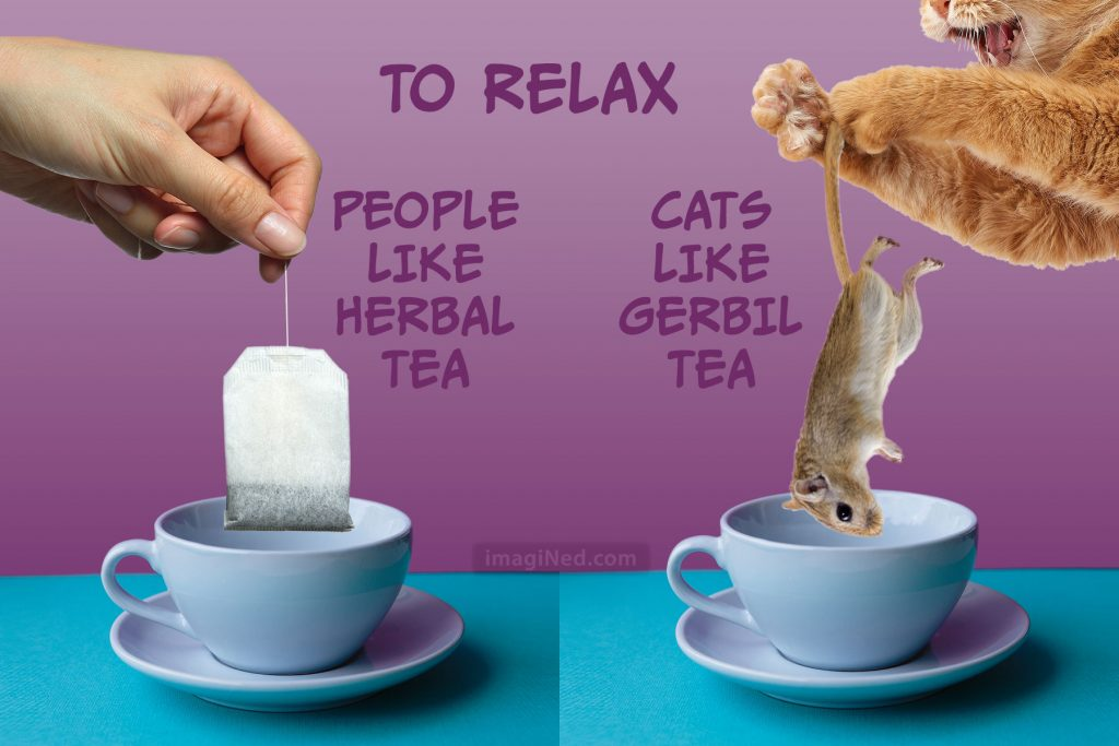 Two side-by-side teacups. Over one, a human hand holds a teabag. Over the other, a cat's paw holds a gerbil.
